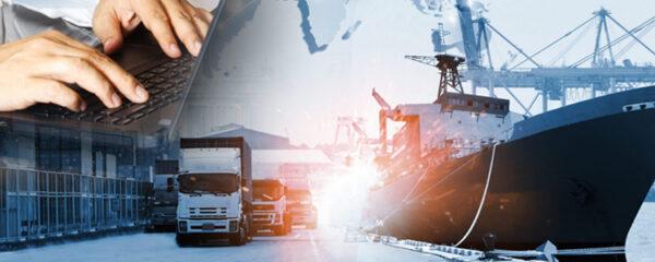 gestion commerciale import export